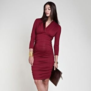 NWT Isabella Oliver Olivia Dress Berry 2